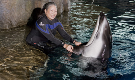 Lisa and dolphin